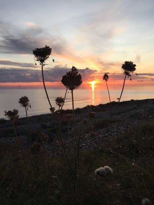 Kattegat ved solopgang