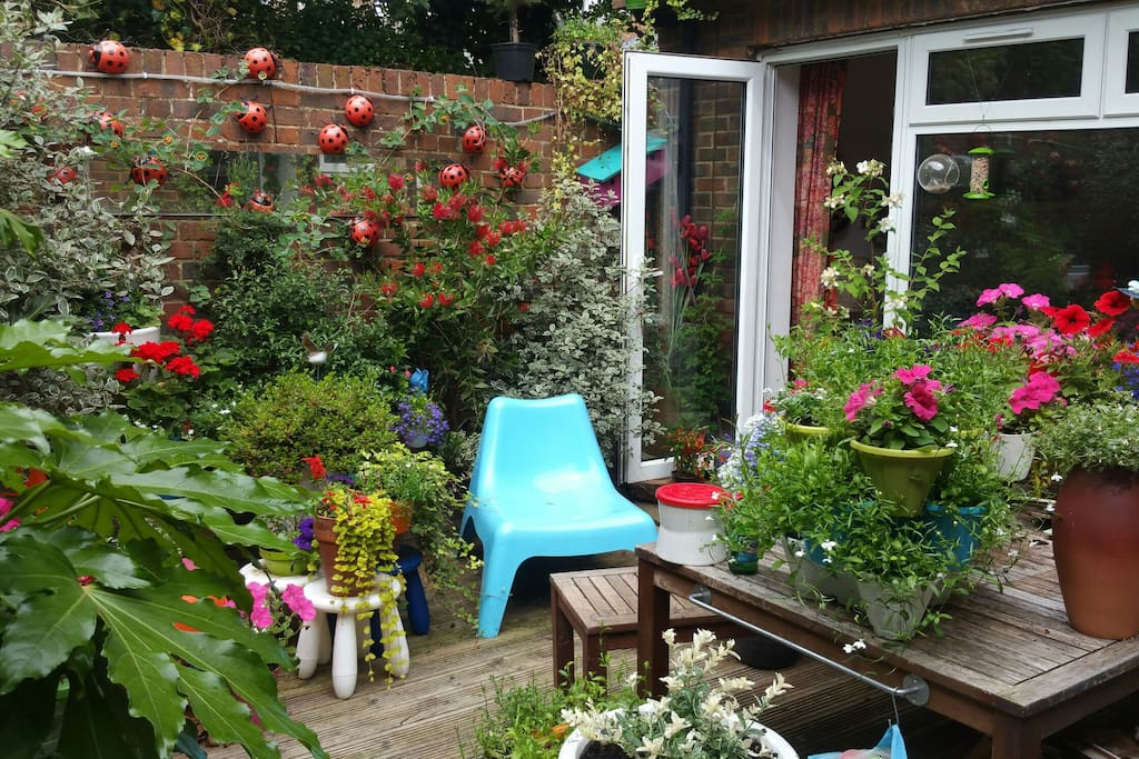 The garden is an oasis of colour and calm