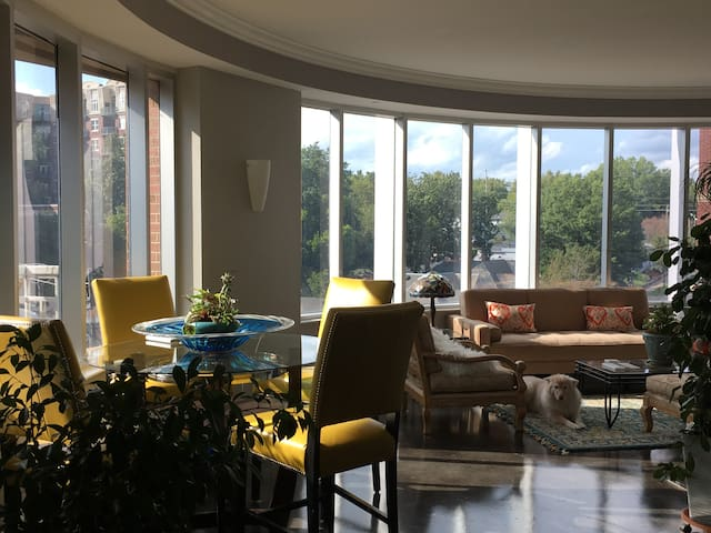 Amazing Downtown Extended Stay