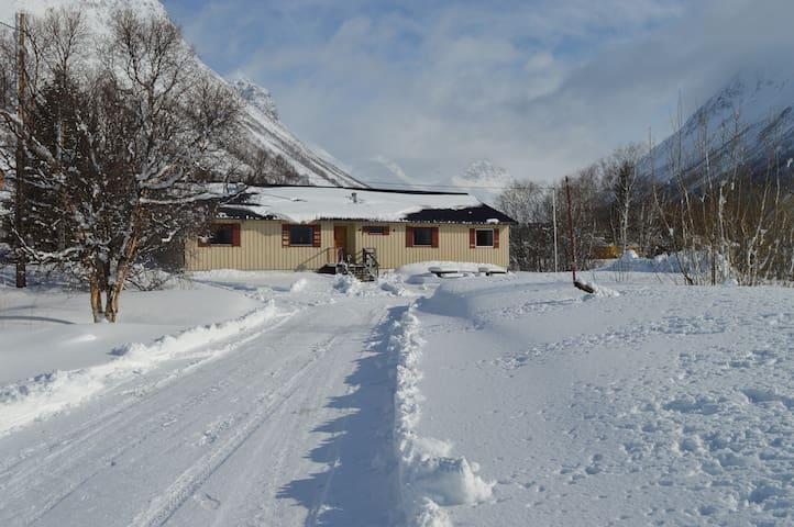 Frøyas hus nr 8