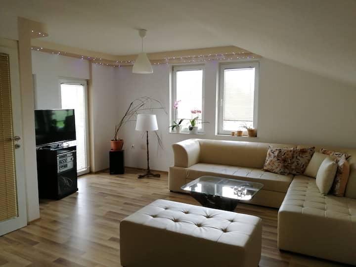 MAV-Bright, cozy, spacious flat with a garden 2