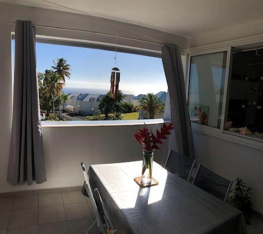 Appartement F2 récent avec vue Mer et Soufrière