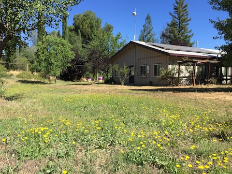 Mini-Ranch Two-Room Suite & Stables near Coloma