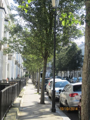typical Central London terrace. white stucco houses but this has very green tall trees that give a lovely green view even from my windows..
