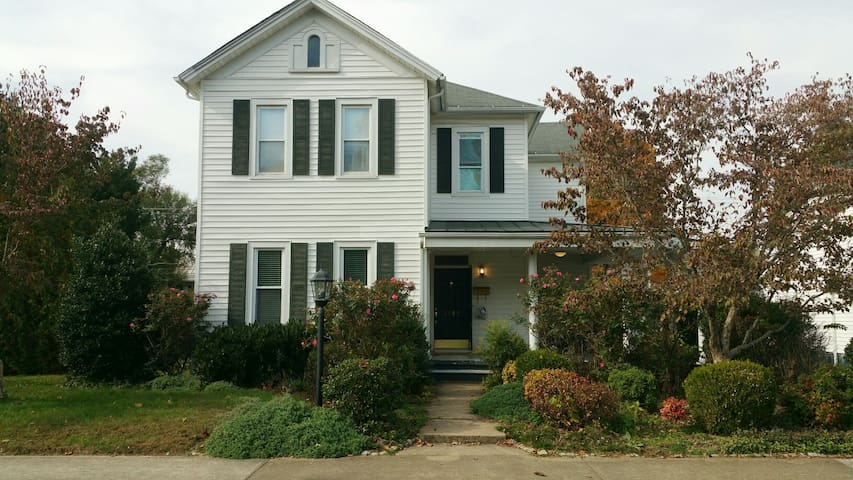 Beautiful 5 bdrm home near Blue Rdg - Buena Vista - House