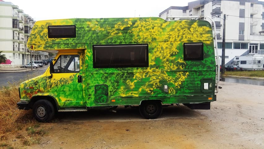 LETS GO GREEN CAMPER