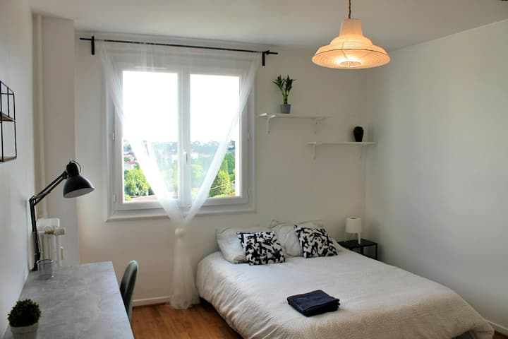 Superb cozy room in renovated apartment