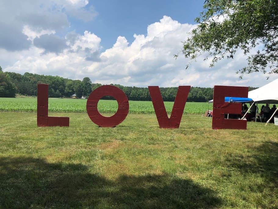 VA Love sign