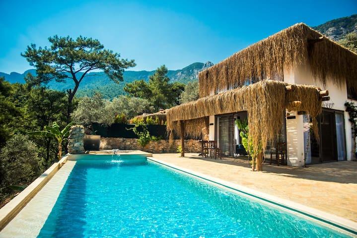 Villa Cozy
