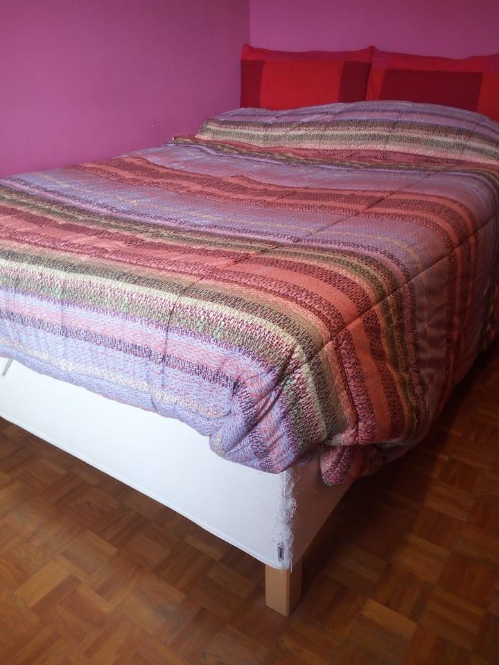 Cozy room Seregno - (Monza e Brianza)