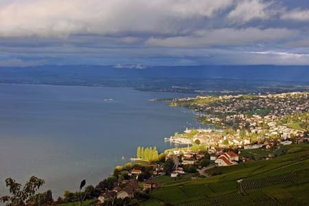Villa Lavaux B&B2 Upscale comfort, superb views - Grandvaux, Bourg-en-Lavaux - Bed & Breakfast
