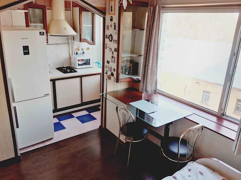Mini True Travel apartment in the center(Pechersk)