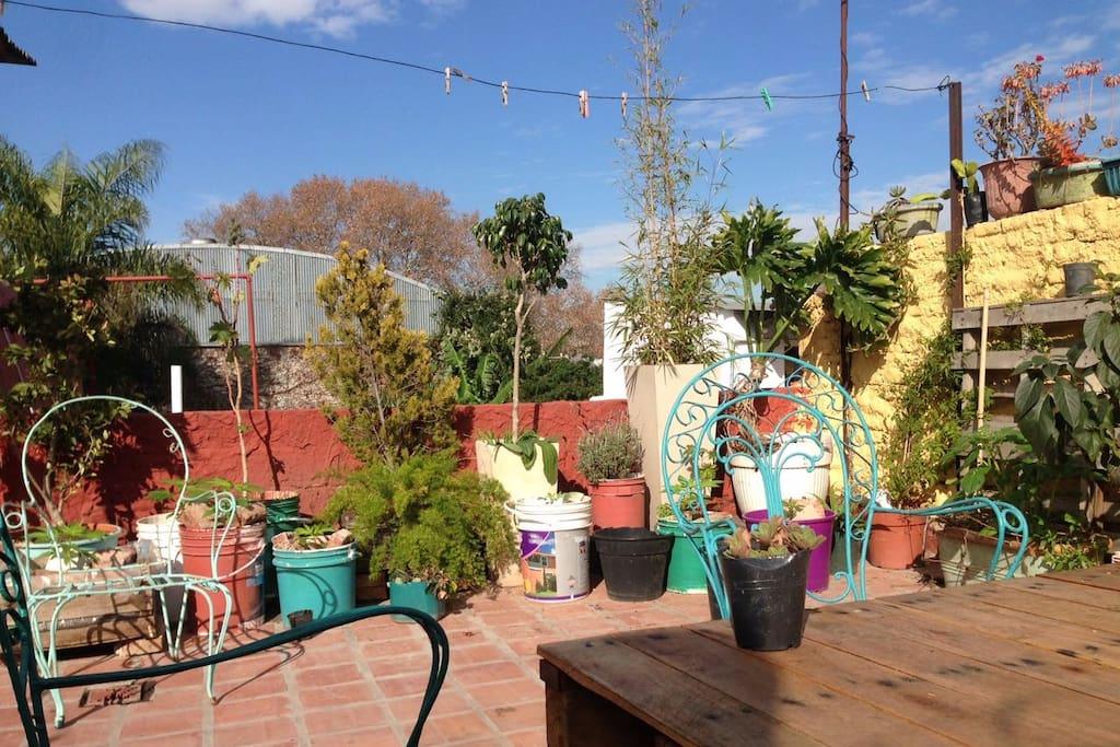 Terraza con mucho sol aire y verde