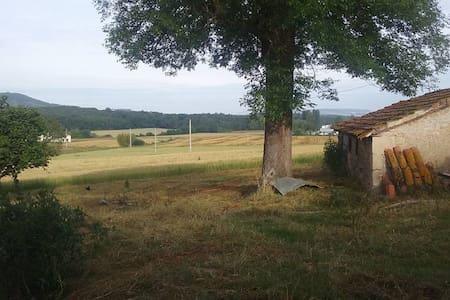 Jolie maison - Monclar - Hus