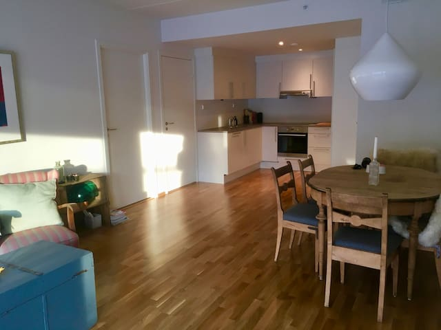 Brand new apartment with terrace