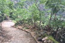 Promenade jusqu'à Leni (20 minutes de descente, un peu plus pour la montee)