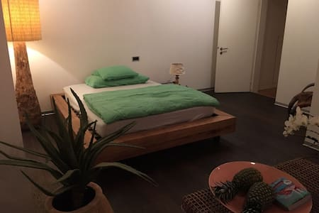 Cozy guest room with private bathroom and garden - Uitikon Waldegg