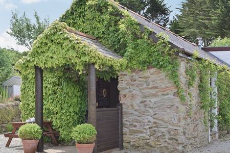 Converted cornish barn - Goonhavern - Hus