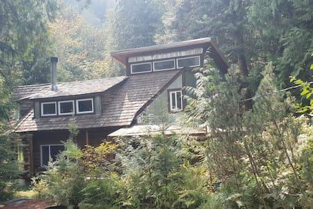 Cabin Caslte