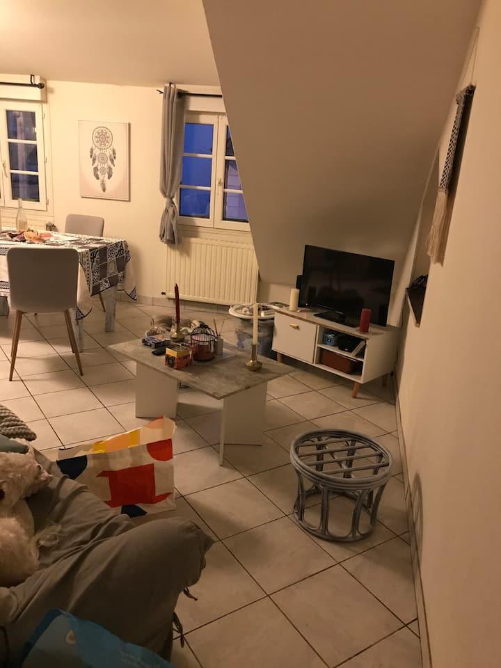 Chambre dans un appartement T3