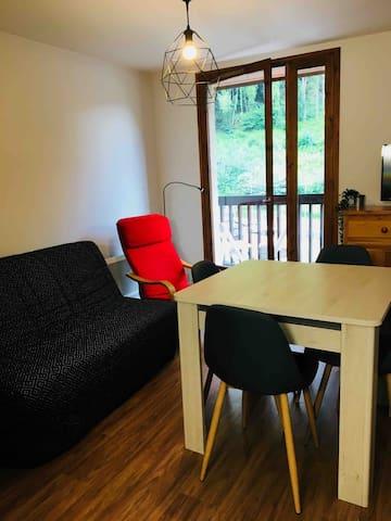 Duplex moderne et calme 45m2, idéal ski ou cures.