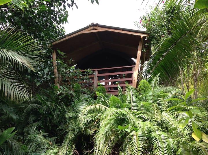 A PEACE IN PARADISE (Bamboo Log Cabana)