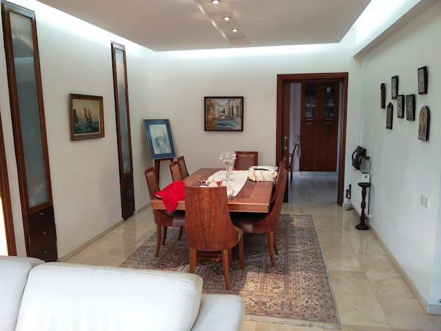 Quiet Big House & Garden-single bed - Nicosia - House