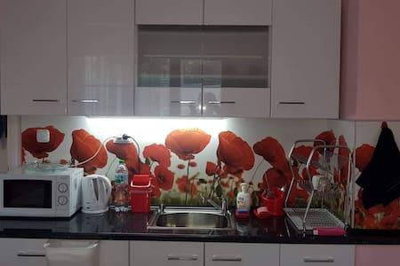 Poppy flowers apartment