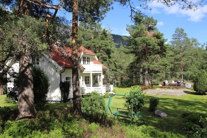 Idyllic house in beautiful Telemark in Fjågesund