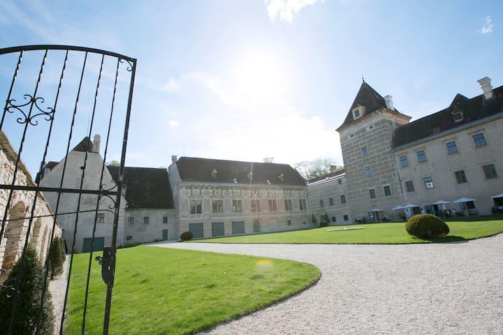 Übernachten Sie im Schloss Walpersdorf - Walpersdorf - Selveierleilighet