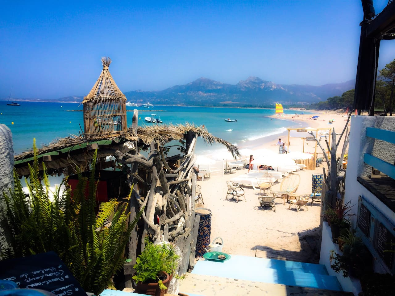 Beaches in Calvi is one of the best in Corsica
