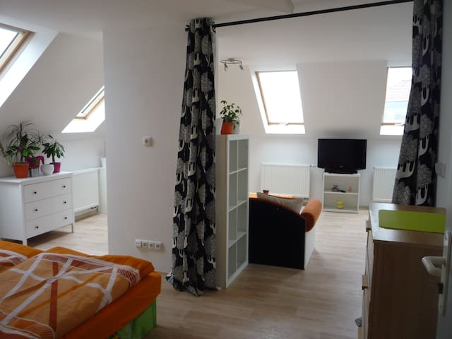 Attic apartment for 1-4 people - Prag - Vindsvåning