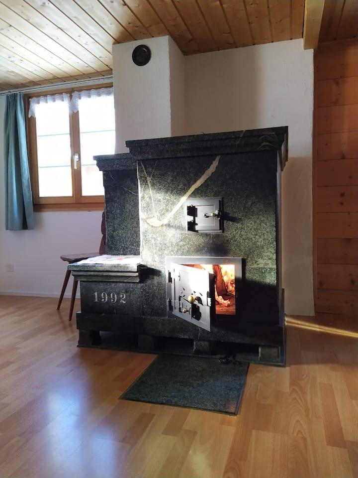 Gemütliche Wohnung mit Specksteinofen