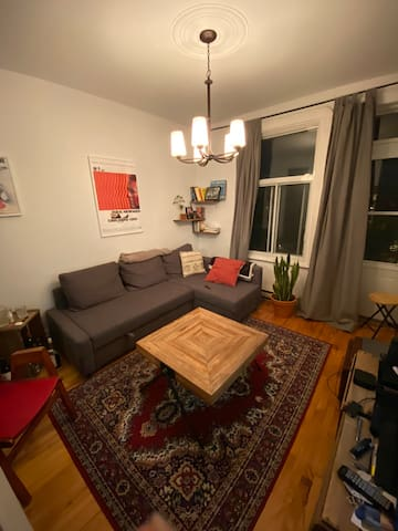 Cosy apartment close to Plateau and Little Italy
