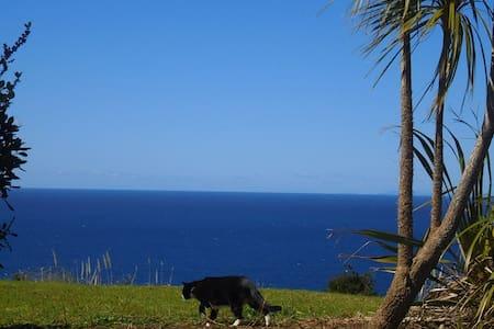 Purring Ocean Views - in a Nutshell - Tutukaka - Asuntoauto