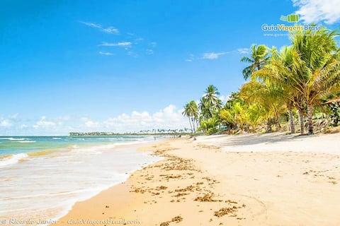 Beautiful apt 200m from Itacimirim Beach !!