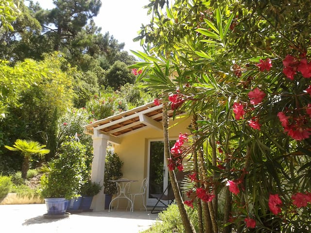 RAYOL au CALME studio  rez jardin dans villa (bas)