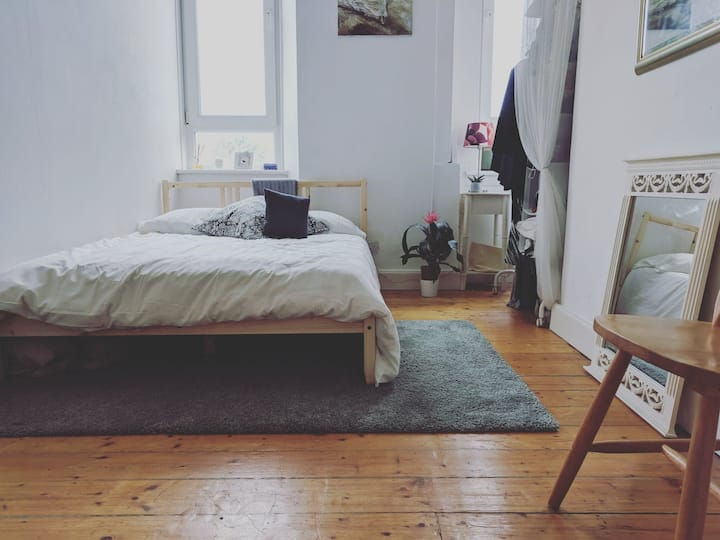 Bright Room in Traditional Glasgow Flat - Hampden