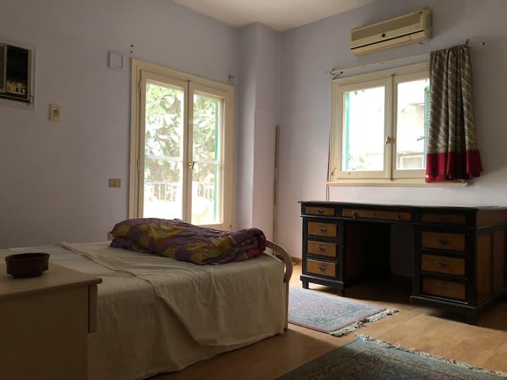 Room in a spacious apt in green calm neighborhood