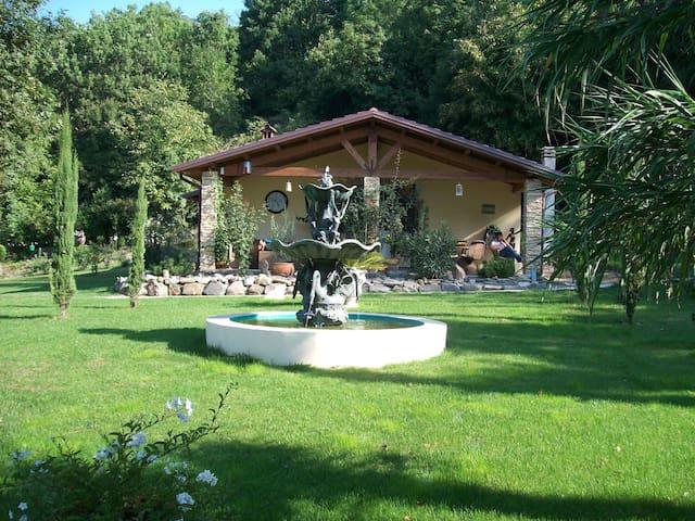 Villa Lorella / Villa mit Pool auf  5ooom2 - Villecchia - House