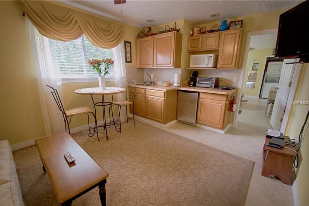 TV and Kitchenette with Microwave, toaster oven, mini fridge and hot plate