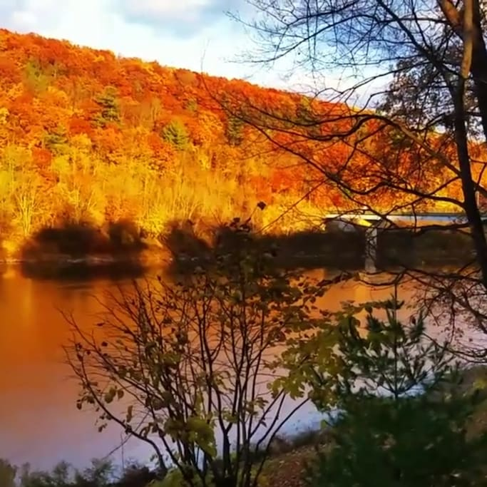View from porch of fall foliage.  Falls bridge in view