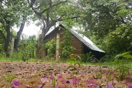 Secret log cabin - Hazyview