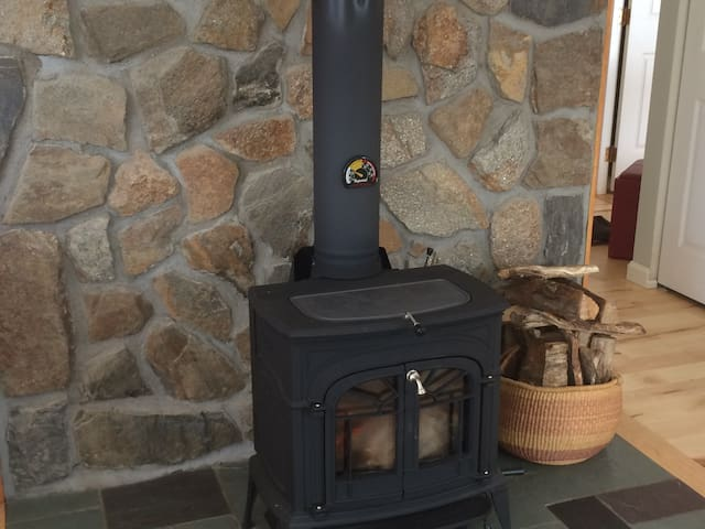 Woodstove with wood