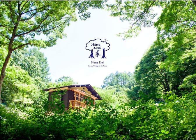 森の中の一棟貸切コテージ【BBQレンタル可能】静かにゆったり過ごしたい方にお薦め。4名様迄。