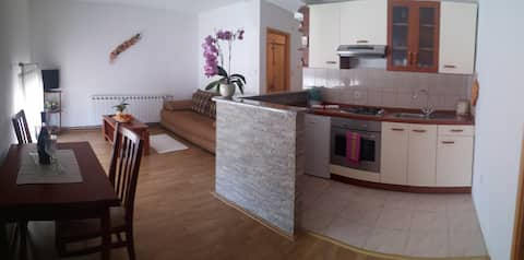 Apartment in Guest House Domig (Gacka)