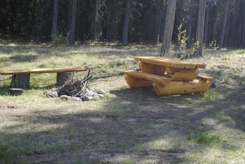 Custom Log Picnic Table and Fire Pit