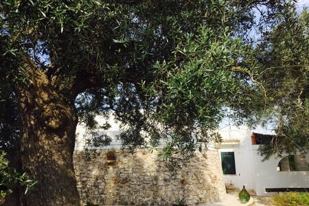 Villa-Cascina dei fiori - Provincia di Brindisi - 별장/타운하우스