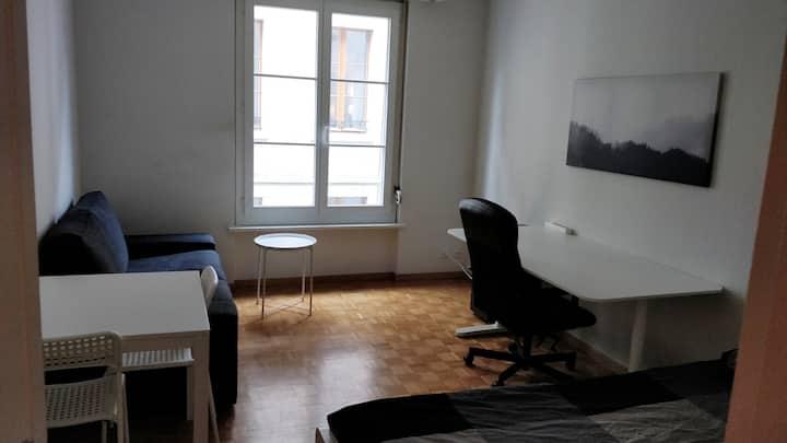 Cosy studio in Geneva old town