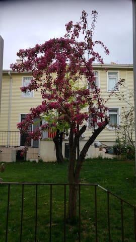 Garden House in Batıkent/ Batıkent'te Müstakil Ev